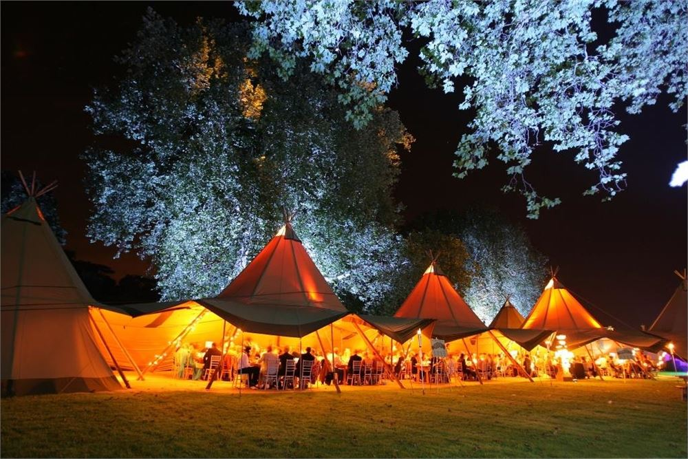 festival wedding dj Ditton Field