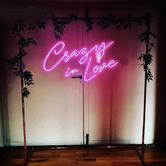 crazy in love neon light.png
