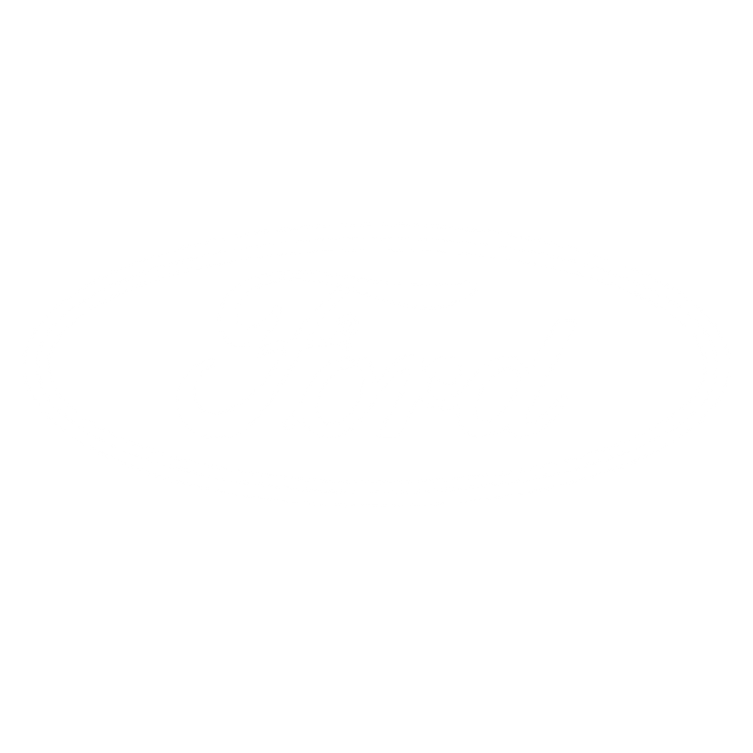 ford-logo-large-1024x441_WHITE.png