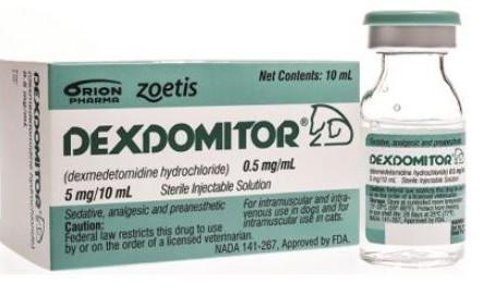 Dexmedetomidine in Detail