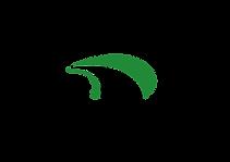 Dornadzor_logo-01.png