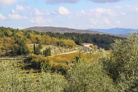 Castellina in Chianti-060-800x600.jpg