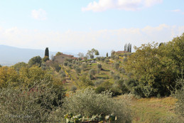 Toscana de Vespa-004-800x600 2.jpg