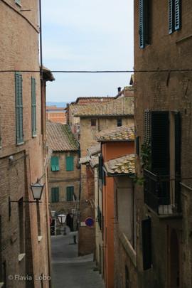 Siena-063-800x600.jpg