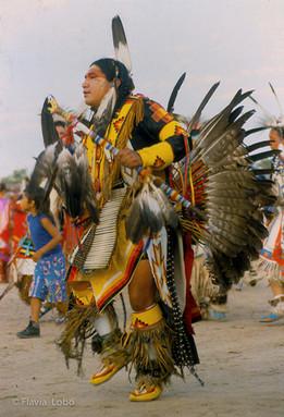 Sioux 800x600-001.jpg