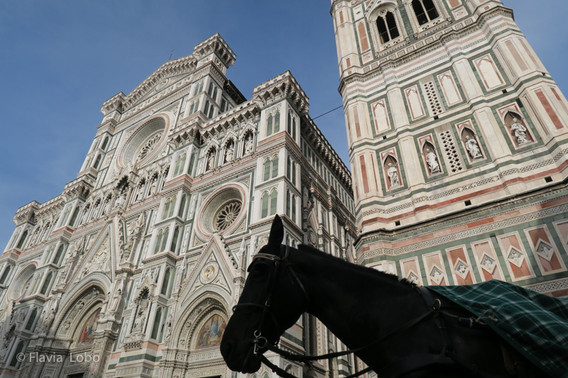 Firenze 2016-002-800x600.jpg