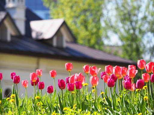 Get Your Home Ready for the Spring Season