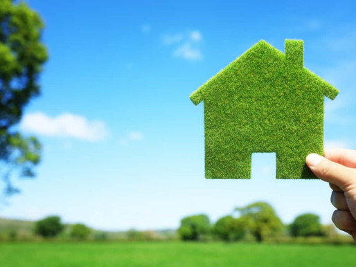 6 Small Changes for an Eco-Friendly Home