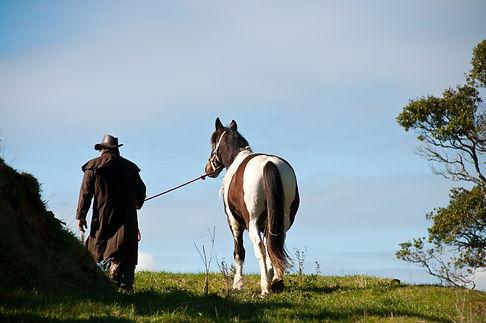 Farmer leading horse.jpg