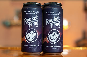 Rocket Frog Wallops Island