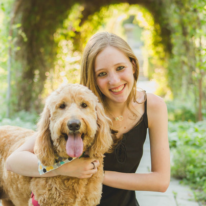 Dog senior session. Taken at Fabyan Forest Preserve in Geneva IL.