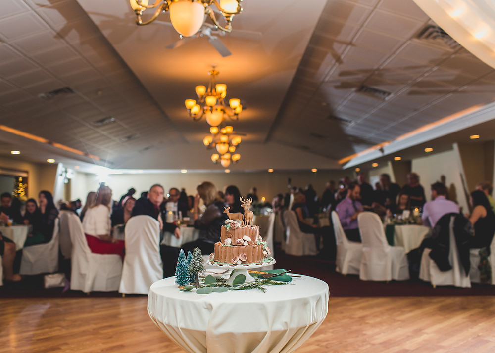 Riverview Banquets Batavia IL, Composed and Exposed Photography, Batavia IL photographer,