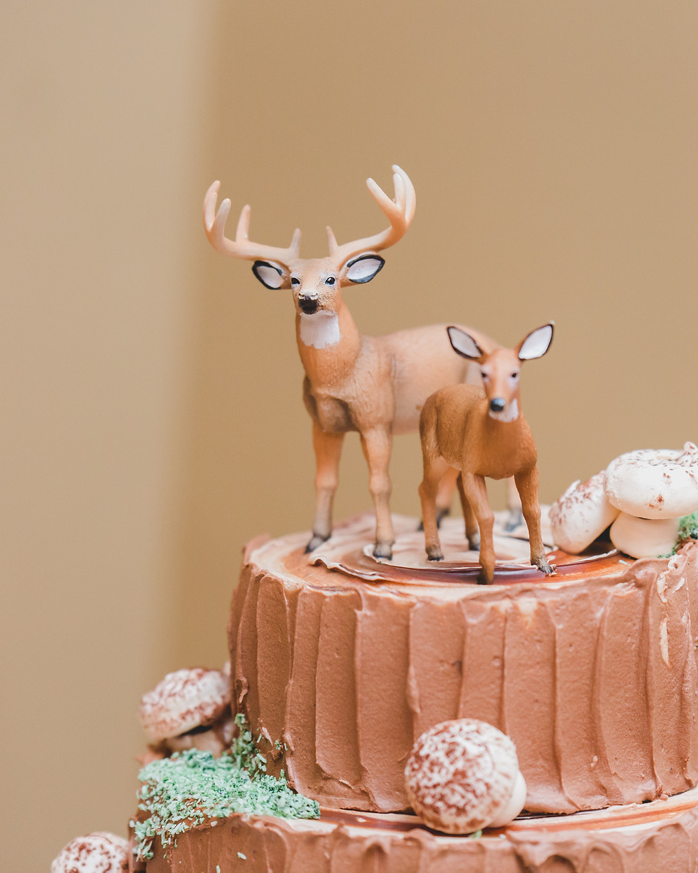 wedding cake topper, customized wedding, Riverview Banquets in Batavia IL,