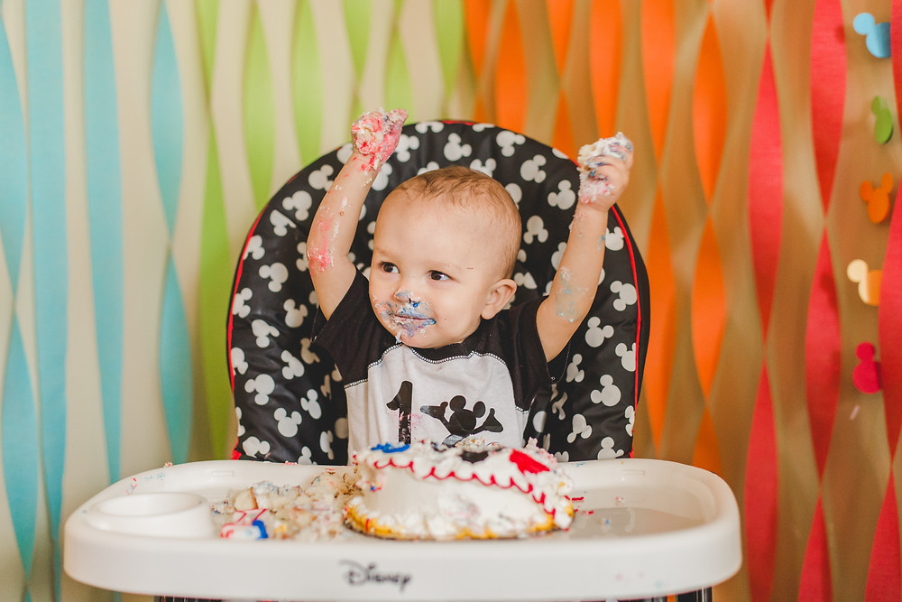 Cake smash photographer. South Elgin photographer