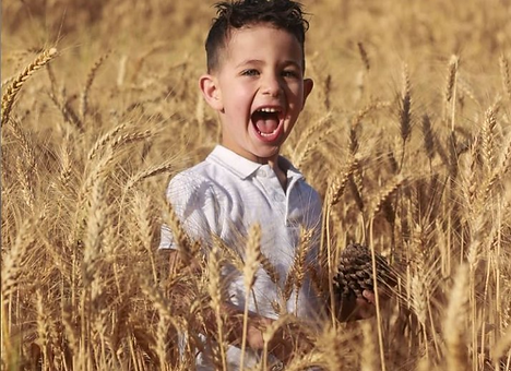 child in wheat 28 Apr.png