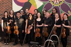 NMF 2016 Viola section