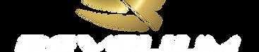 logo revelium