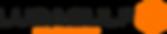 LOGO LUBAGULF 2020 - NOIR RVB - H.png
