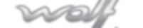 logo wolf lubrifiant