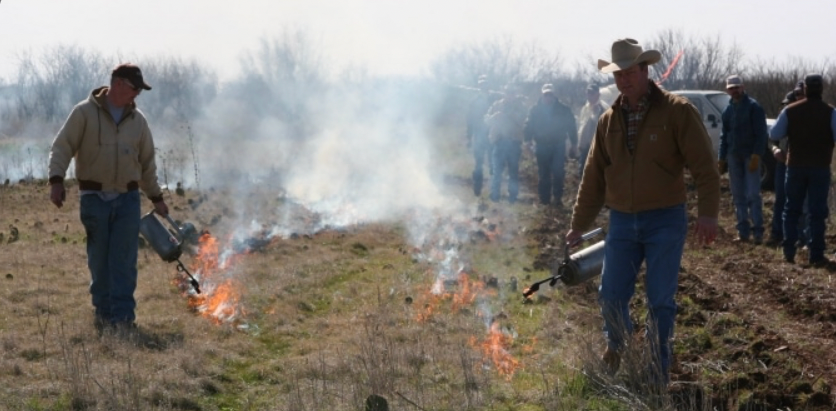 Florida's Right to Farm is important to the future of Florida's prescribed burn program