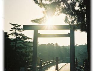 第三十九話 もし観光で、神社に行く時にも