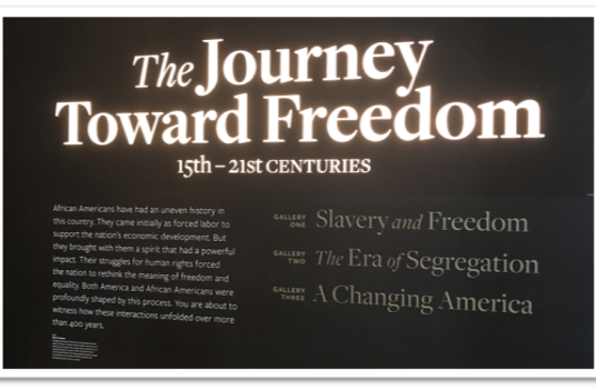 """The Journey Toward Freedom in the Land of The """"Almost"""" Free"""