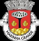 brasao mg.png