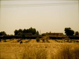 Marocco train ride to Marrakesh.jpg