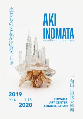 Aki Inomata, Towada Art Center