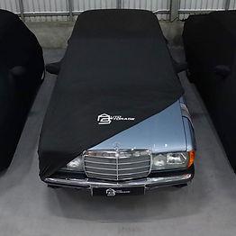 autostorage car cover