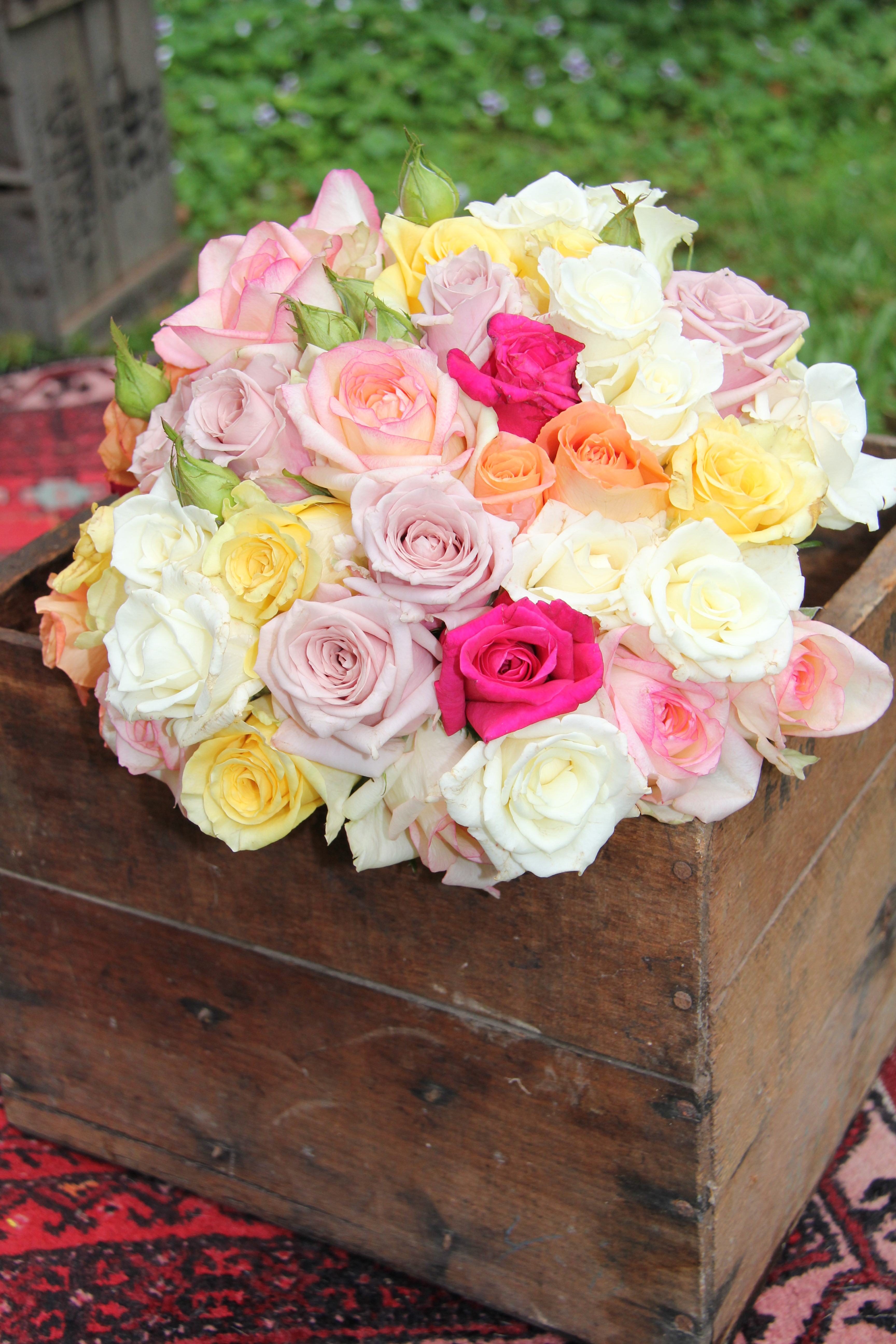 Field rose large posy