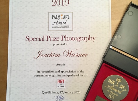 Received the Special Prize Photography at the Palm Art Award 2019