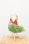 Ein singender Vogel (Eine Pause, dann ein langer Kuss)
