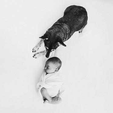 "Sesja WHITE & ART // noworodkowo-rodzinna //  ""Emilia & Fiba"""