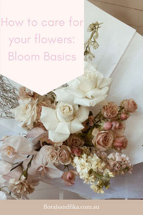 Bloom Basics: How To Care For Your Flowers