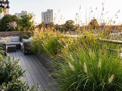Une terrasse accueillante et verdoyante