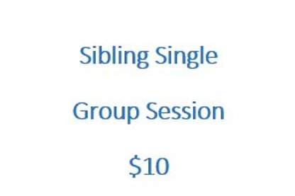 Sibling Single Group Session