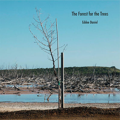 The-Forest-for-the-Trees-cover.jpg