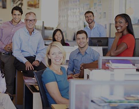 Career Options Culture-building