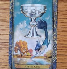 February 2021 - Card of the Month