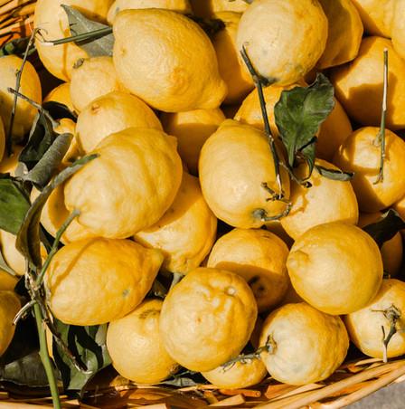 Bio Citrusfrüchte