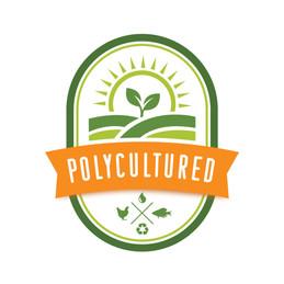 cannabis graphic designer