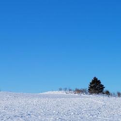 vinterbild 2