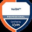EXIN VeriSM Professional #promentek #exin #digitaltransformationofficer #verism