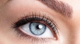 Marion Schröttner Cosmetic - Permanent Make Up - Augenbrauen 7