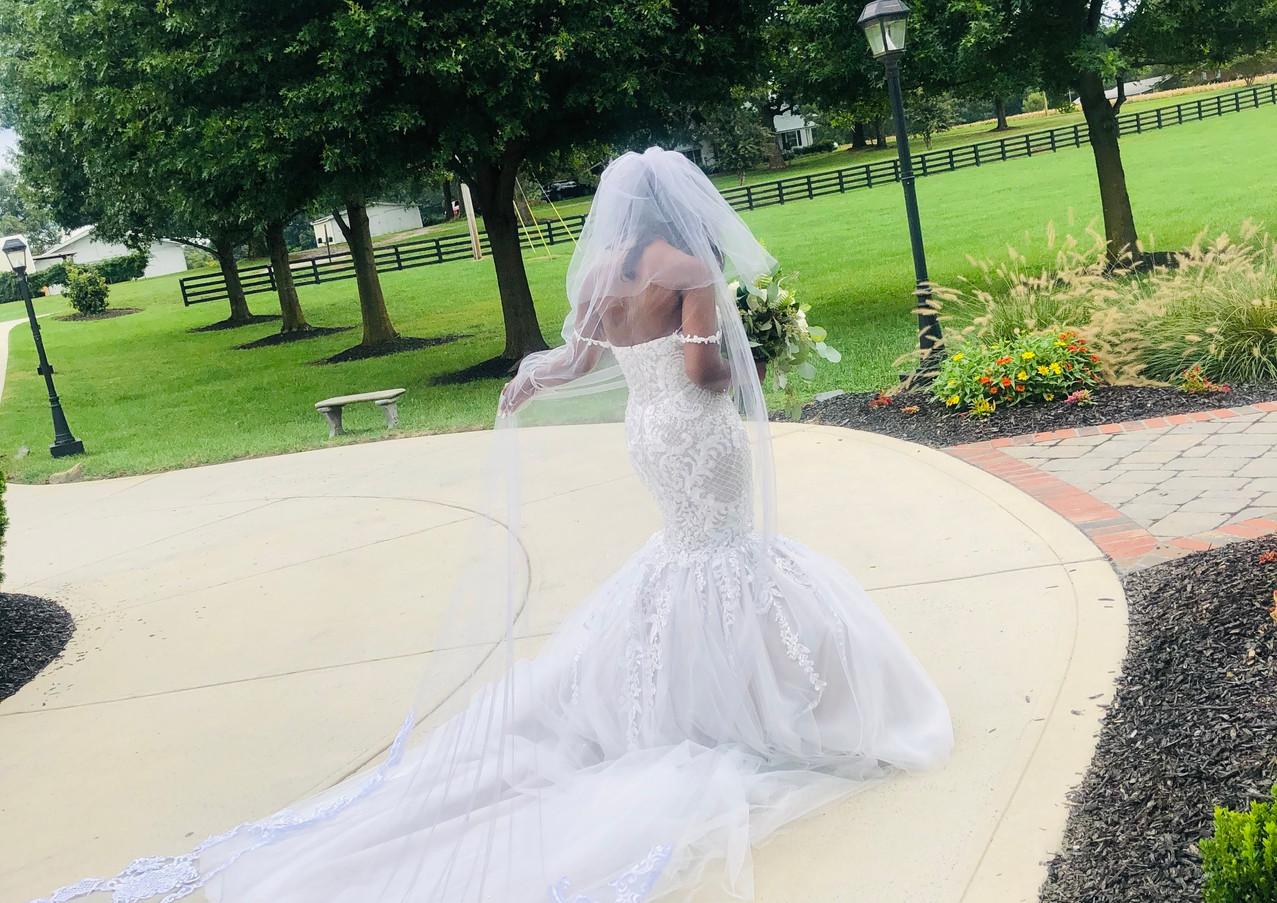 Lusu's Wedding Dress