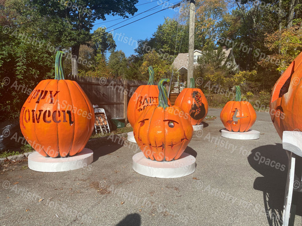 Giant Display Pumpkins