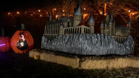 castle_night2.mov