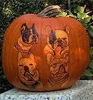 Pet Portraits - Pumpkin Carving