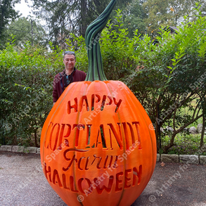 Giant Display Pumpkin